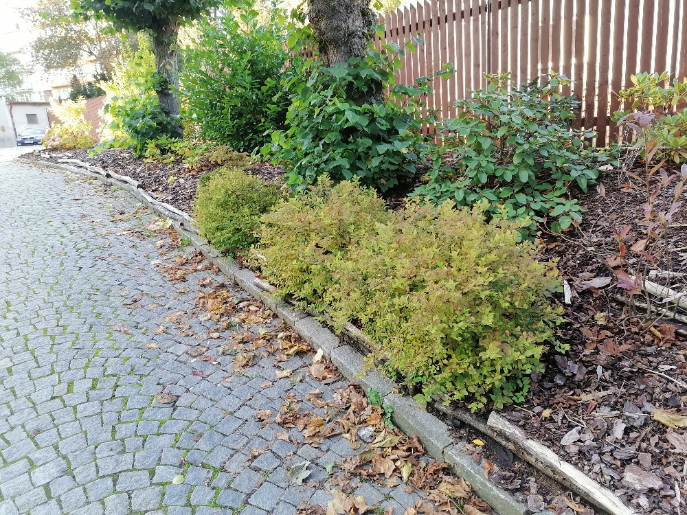 Podzimní práce na zahradě